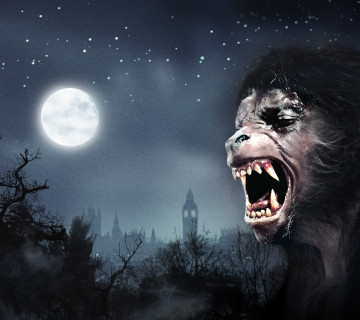 An American Werewolf In London HHN 2014